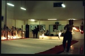 cynthia rothrock seminar albion dojo